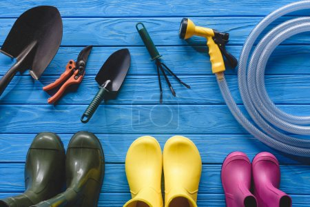 top view of colorful rubber boots and gardening tools on blue wooden planks