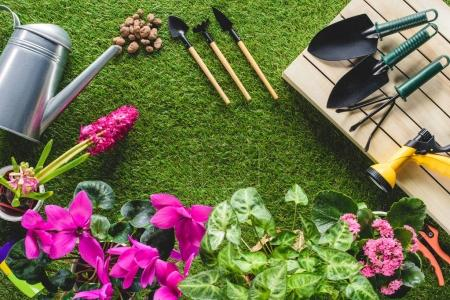 Photo for Top view of arranged gardening equipment and flowers on grass - Royalty Free Image