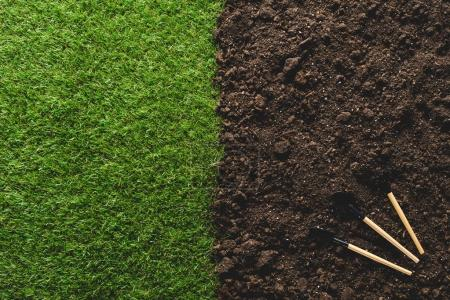 Photo for Top view of lawn and gardening tools on soil - Royalty Free Image
