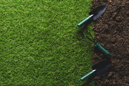 Photo for Top view of grass and shovels with hand rake on soil - Royalty Free Image