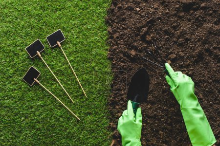 Photo for Cropped image of gardener in protective gloves working with gardening tools and empty blackboards on grass - Royalty Free Image
