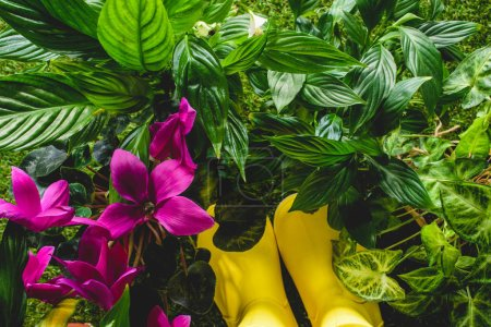 top view of yellow rubber boots and flowers