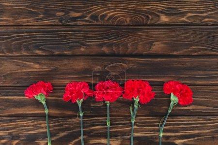 Photo pour Vue du dessus des oeillets placés en rangée sur fond en bois - image libre de droit