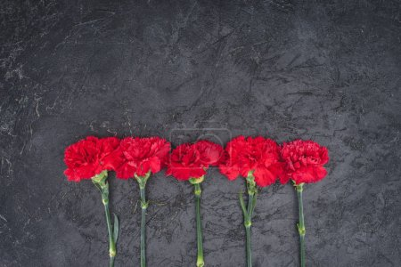 top view of carnations placed in row on rustic black surface