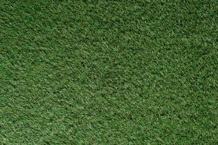 Photo for Top view of field with green grass - Royalty Free Image