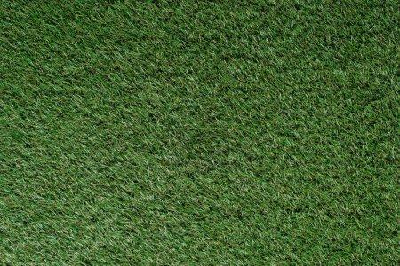 Photo pour Vue du dessus du champ avec herbe verte - image libre de droit