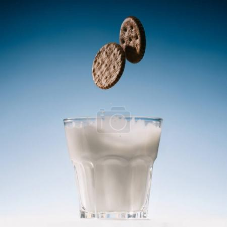 Two biscuits falling into glass of milk isolated on blue background