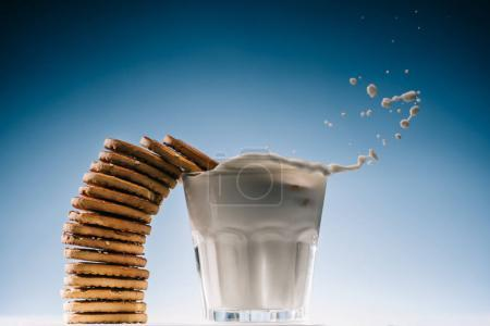 Stack of biscuits splashing into glass of milk isolated on blue background