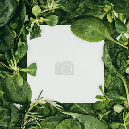 Photo for Top view of blank white card and beautiful fresh green leaves and plants - Royalty Free Image