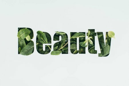 word beauty made from fresh green leaves isolated on grey