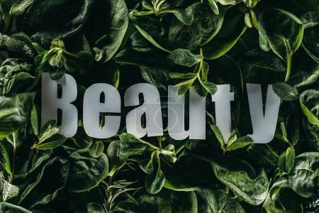 top view of beautiful fresh green leaves and inscription beauty