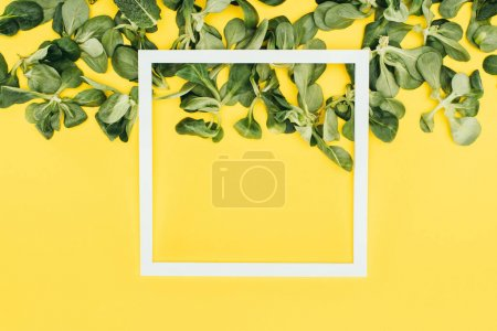 blank white frame and green leaves on yellow