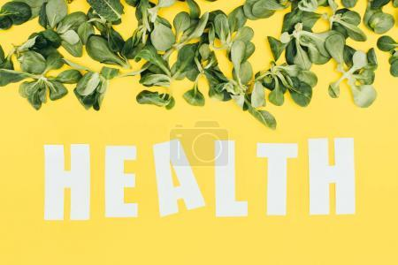 beautiful green leaves and inscription health on yellow