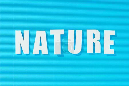 white word nature on bright blue striped background, nature concept