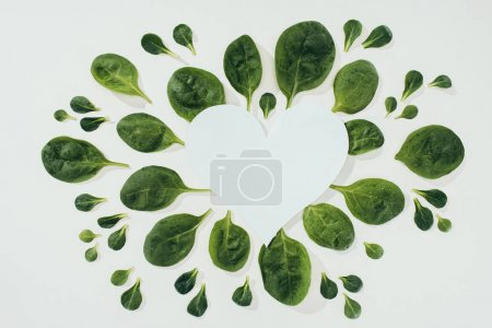 top view of beautiful fresh green leaves and blank white heart symbol with copy space on grey