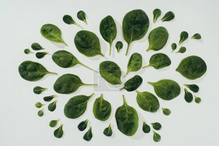 top view of beautiful fresh green spinach leaves of various sizes isolated on grey