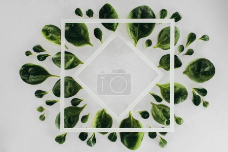 top view of beautiful fresh green leaves, white rhombus and square on grey