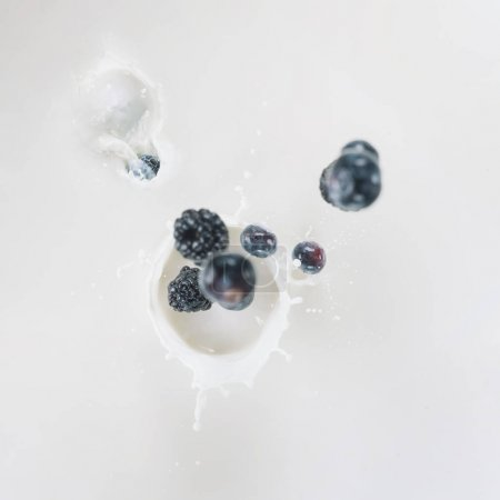 Raw blue berries splashing into milk on white background