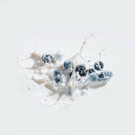 Berry fruits falling in milk with drops on white background