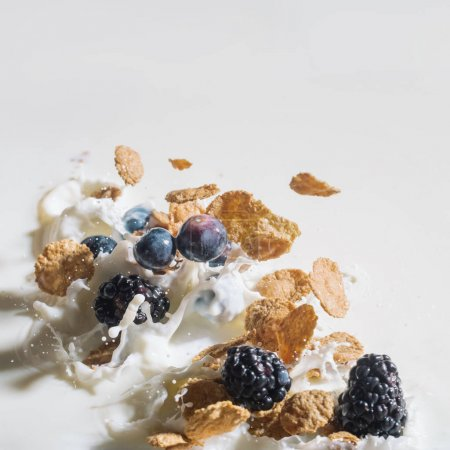 Photo for Breakfast cereals with berries splashing into milk on white background - Royalty Free Image