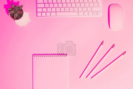 pink toned picture of computer keyboard and mouse, plant, textbook and pencils on table