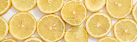 Photo pour Top view of ripe fresh yellow lemon slices pattern on white background, panoramic shot - image libre de droit