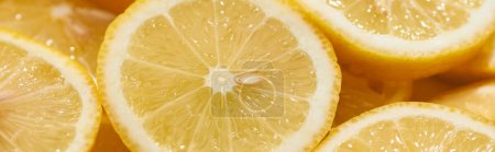 Photo pour Close up view of ripe fresh yellow lemon slices, panoramic shot - image libre de droit