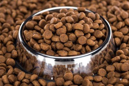 Foto de Comida de mascotas seca en tazón de plata y alrededor. - Imagen libre de derechos