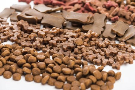 selective focus of fresh assorted dry pet food in lines isolated on white