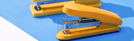 panoramic shot of staplers and paper isolated on white
