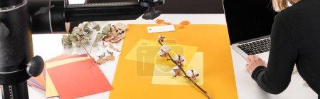 Photo pour Vue recadrée du photographe faisant composition avec fleur de coton et accessoires pour la séance photo avec appareil photo et ordinateur portable, vue panoramique - image libre de droit