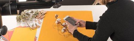Photo pour Vue recadrée du photographe prenant des photos de composition avec fleur de coton et accessoires sur smartphone, prise de vue panoramique - image libre de droit