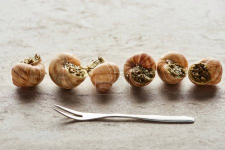 Photo for Delicious gourmet escargots in row near fork on stone background - Royalty Free Image