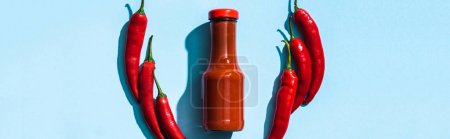 Top view of ketchup in bottle with chicle peppers on blue background, panoramic shot