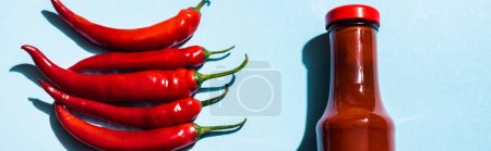 Photo for Top view of ripe chili peppers and chili sauce in bottle on blue background, panoramic shot - Royalty Free Image