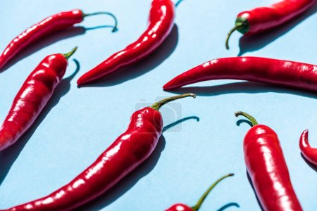 Photo for Spicy chili peppers with shadow on blue background - Royalty Free Image