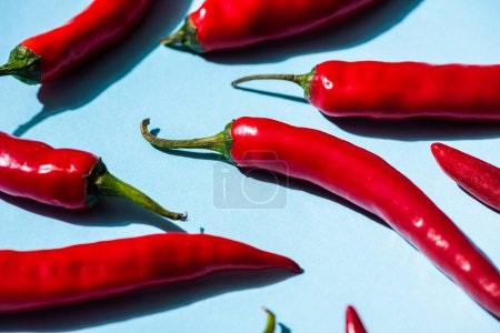 Photo for Fresh spicy chili peppers on blue background - Royalty Free Image