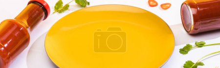 Photo for Panoramic shot of bottles with ketchup with cilantro and plate on white background - Royalty Free Image