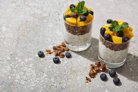 tasty granola with canned peach, blueberries and yogurt with chia seeds on grey concrete surface
