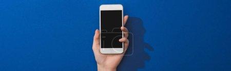 cropped view of woman holding smartphone on blue background, panoramic shot
