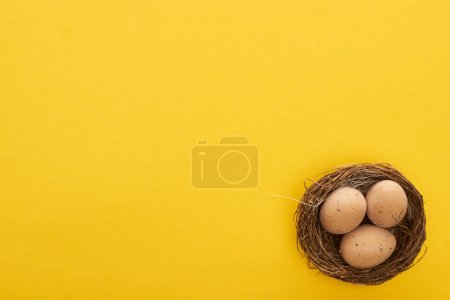 Photo for Top view of chicken eggs in nest on colorful yellow background with copy space - Royalty Free Image