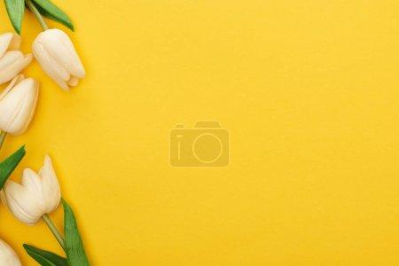 Foto de Vista superior de los tulipanes primaverales sobre fondo amarillo colorido con espacio de copia. - Imagen libre de derechos