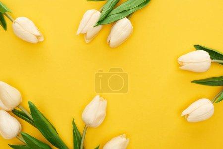 Photo pour Vue de dessus des tulipes de printemps sur fond jaune coloré - image libre de droit