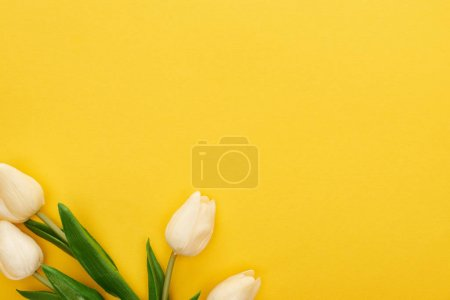Photo for Top view of spring tulips on colorful yellow background - Royalty Free Image