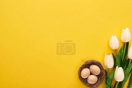 Photo for Top view of tulips and chicken eggs in nest on colorful yellow background - Royalty Free Image