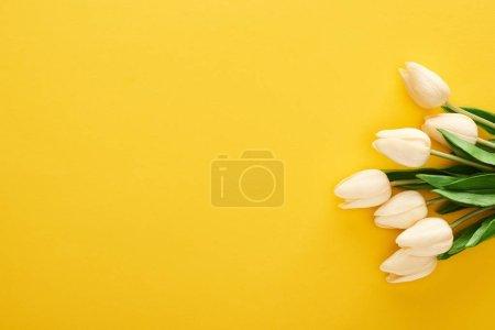 Foto de Top view of spring tulips on colorful yellow background - Imagen libre de derechos