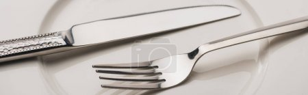 Photo for Panoramic shot of shiny cutlery on clear plate - Royalty Free Image