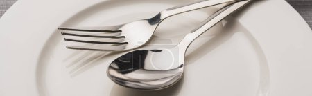 Photo for Close up view of spoon and fork on clear plate, panoramic shot - Royalty Free Image