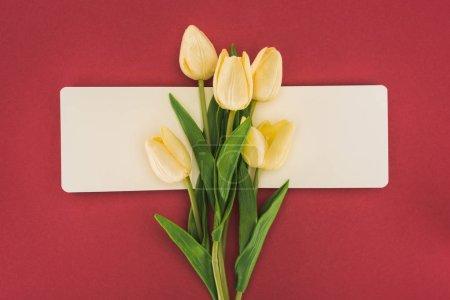Photo pour Vue du haut des tulipes et bloc-notes vide isolés en rouge - image libre de droit