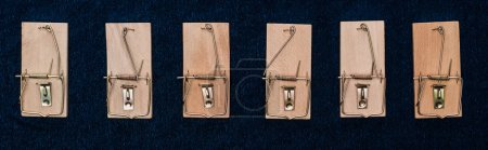 top view of wooden mousetraps in line on blue background, panoramic shot